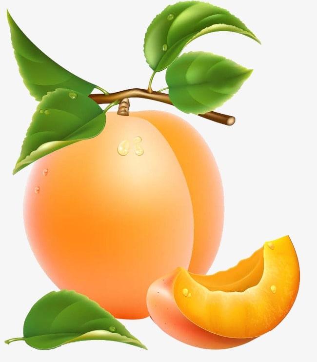 приснился абрикос